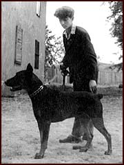 E.Rozenberg with his first dobermann  Kim-Chuk, born 1961