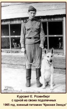 военный питомник Красная Звезда, курсант Е. Розенберг с одной из своих подопечных